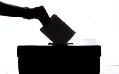 Be Present and Be Counted (Exercise of Voting Rights at Shareholder Meetings)